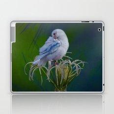 Preen Laptop & iPad Skin