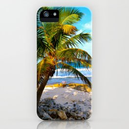 Mexican Palm iPhone Case