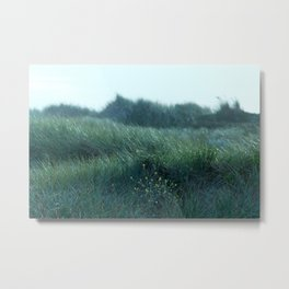 a breeze we used to know Metal Print