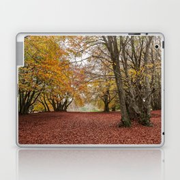 Autumn in the woods of Canfaito park, Italy Laptop & iPad Skin