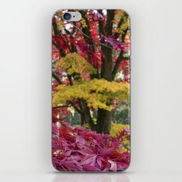 Acer Colours iPhone Skin