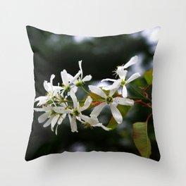 Spring!  Serviceberry blossoms Throw Pillow