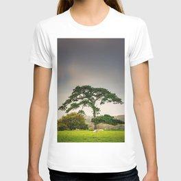 Grey Day T-shirt