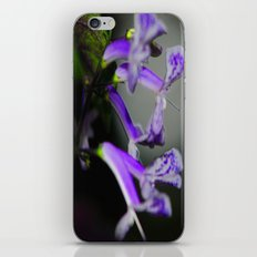 the color purple iPhone & iPod Skin