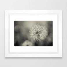 the blowball Framed Art Print