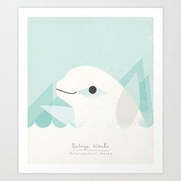 Buluga Whale Art Print
