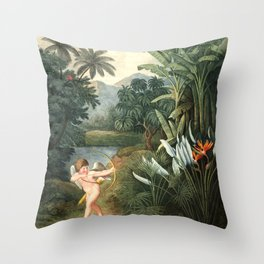 Cupid : New Illustration Of The Sexual System Throw Pillow
