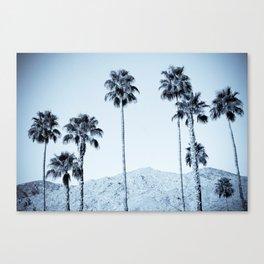 Desert Palms Canvas Print