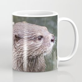 Zwergotter Coffee Mug