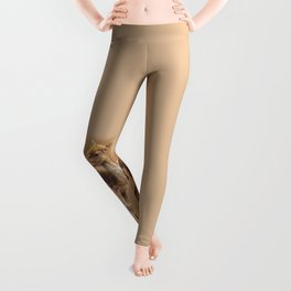 Doe Leggings