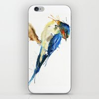 swallow iPhone & iPod Skins featuring Swallow by Meg Ashford