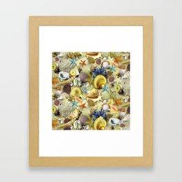 Seashells And Starfish Framed Art Print