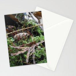 Microcosom Stationery Cards