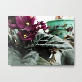 To Be Warm In Winter Metal Print