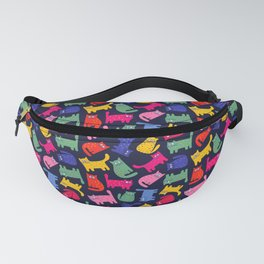 0080 Fanny Pack