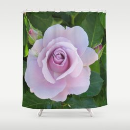 Bloom and Buds Paling to Purple Shower Curtain