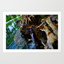 Guadalupe Spring Art Print