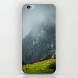 Mountains landscape iPhone Skin