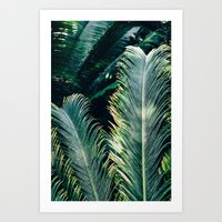 palm tree Art Prints featuring Palm Tree by Pati Designs & Photography