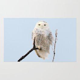 Snowy in the Wind (Snowy Owl) Rug