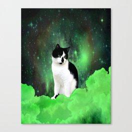 Gypsy Da Fleuky Cat and the Kitty Emerald Night Canvas Print