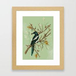 Magpie Jewels Framed Art Print