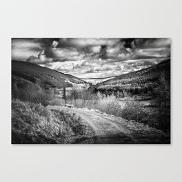 Woodland Valley Canvas Print