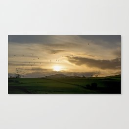 Sunset Flock Canvas Print