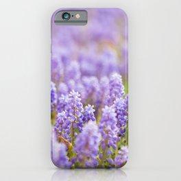 Muscari Magic iPhone Case