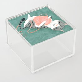 Tangled Up Acrylic Box