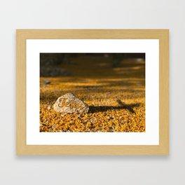 My Rock Framed Art Print