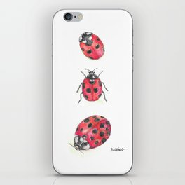Ladybirds (aka Ladybugs) iPhone Skin