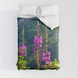 Fireweed ~ Mid-Summer Comforters