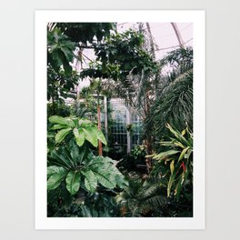 Jungle Vibes Art Print