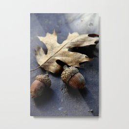Under the oak Metal Print