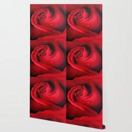 Blossom Big Wallpaper