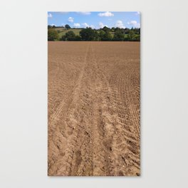The brown vanishing point Canvas Print