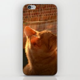 Resting Sunset iPhone Skin