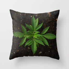 Ganja Marijuana  Throw Pillow