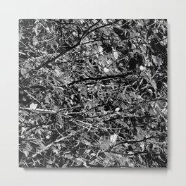 BNW Tree Metal Print