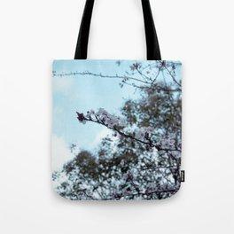sakura blossom on the sky Tote Bag