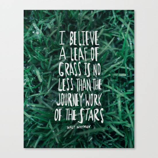 Leaf of Grass Canvas Print