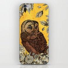 Tawny Owl Yellow iPhone & iPod Skin
