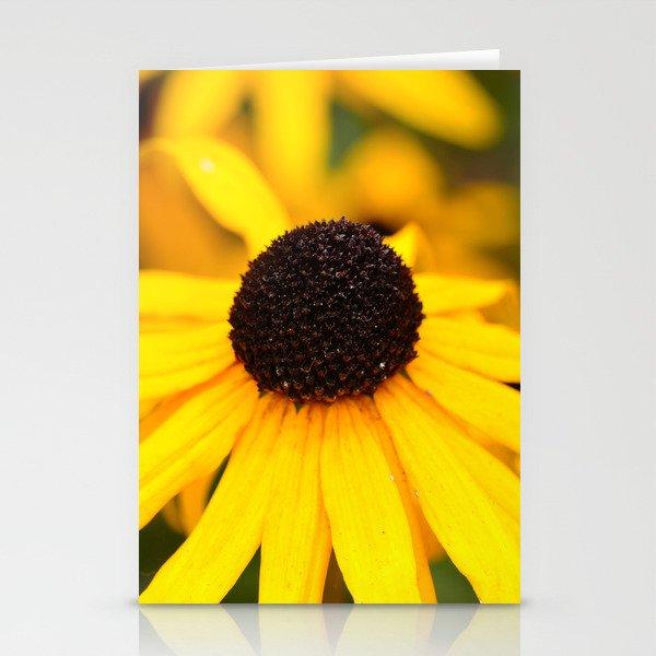 Black-Eyed Susan Stationery Cards