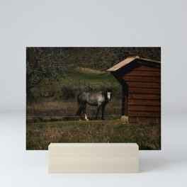 Gray Horse Mini Art Print