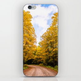 Follow the Colors of Fall iPhone Skin