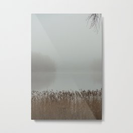 Misty day Metal Print