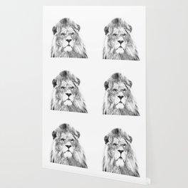 Black and white lion animal portrait Wallpaper