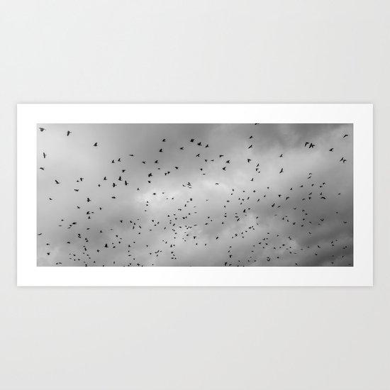 A Murder of Crow's Art Print
