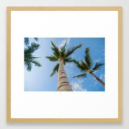 Kona Palms Framed Art Print
